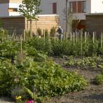 Jardins familliaux
