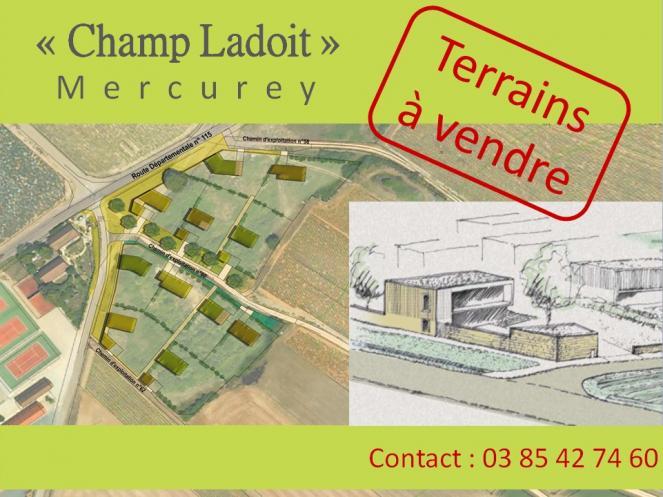 Affiche terrains Champ Ladoit