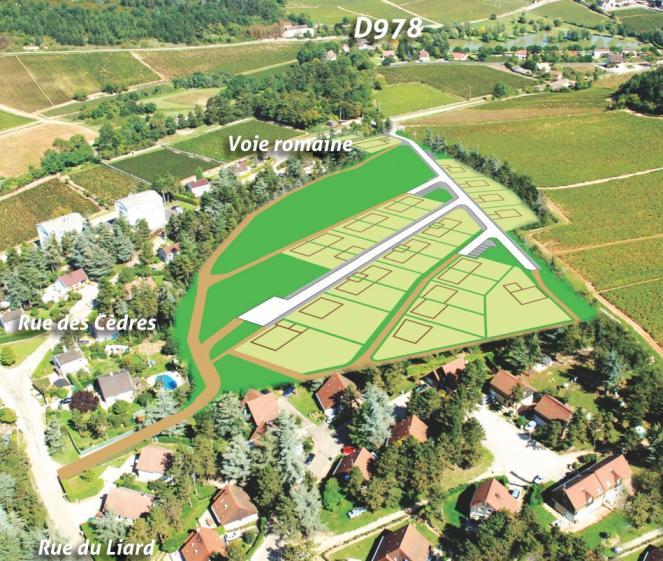 Vue aérienne du lotissement Les Cèdres à Mercurey